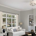 - Repose Gray by Sherwin Williams